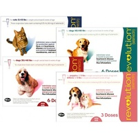 Revolution Flea and Heartworm Protection for Dogs