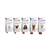Bravecto Flea and Tick Chewable Tablets for Dog