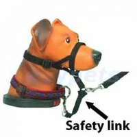 Halti-style Head Collar for Dogs