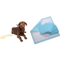 Vebo 60cm x 60cm Pet Puppy Toilet Training Pads / Mats (30 pack)