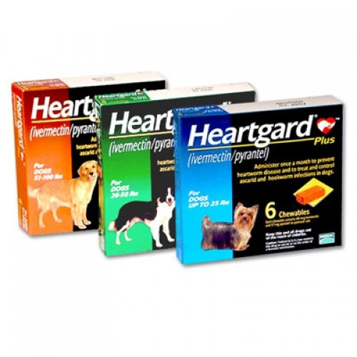 Pack of 6 Heartgard Plus Chewable Tablets for Dog (Blue)